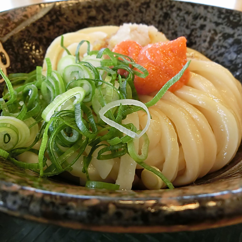 udon_1_wh1000